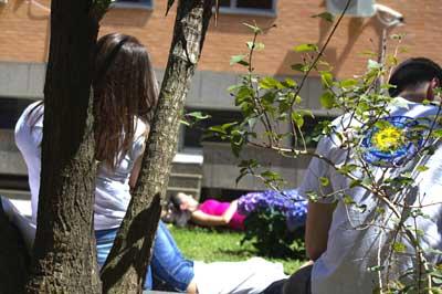 Le università telematiche riconosciute in Italia: