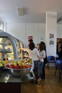 Sistema del tutor in Italia
