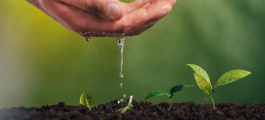 bonifica terreno agricolo